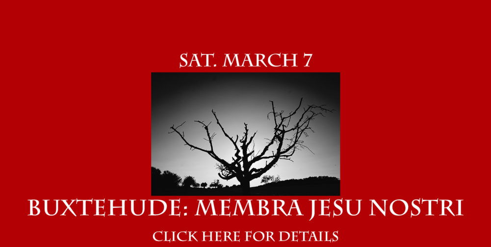 BUXTEHUDE WEBSITE BANNER